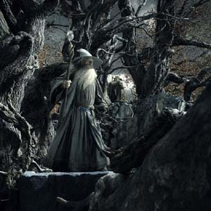 Gandalf the Grey and Radagst the Brownat Gol Dulgur in The Hobbit: The Desolation of Smaug
