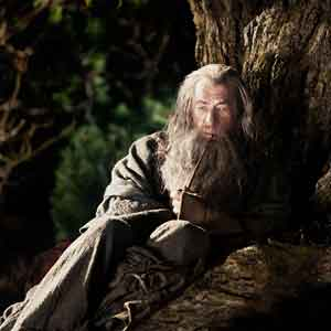 2012, THE HOBBIT: Gandalf the Grey